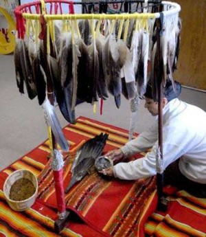 Natives use power of hoop to heal lincoln ne journal star for Fish store lincoln ne