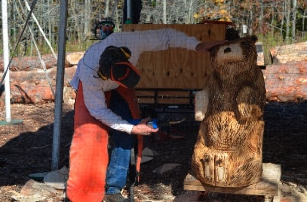 Chain saw carving festival a first for nature center