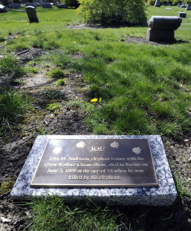 More than 110 years after elephant trainer John M. Anderson was killed by his elephant in June 1898, his unmarked grave finally has a headstone at Mound Cemetery in Racine, Wis. A local group, the High Riders Motorcycle Clubhouse, put a grave marker out