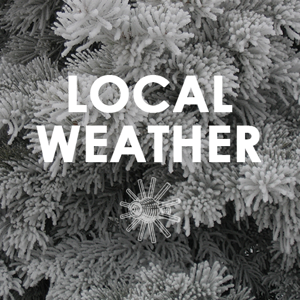 Local Weather Snow