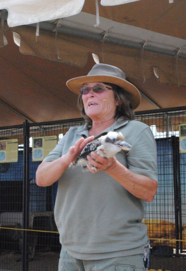 Australia's unique wildlife comes to county fair