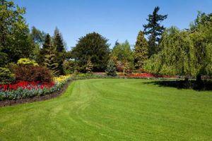 Ledebuhr Lawn Care