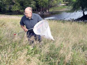 'Ctizen scientist' helping catalog dragonflies in region