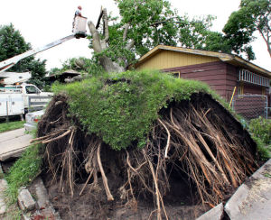 Photos: Weekend storms hit La Crosse area