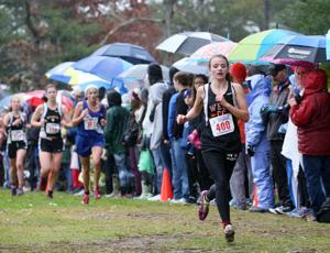 Photos: WIAA Cross Country Championships (10/31/15)