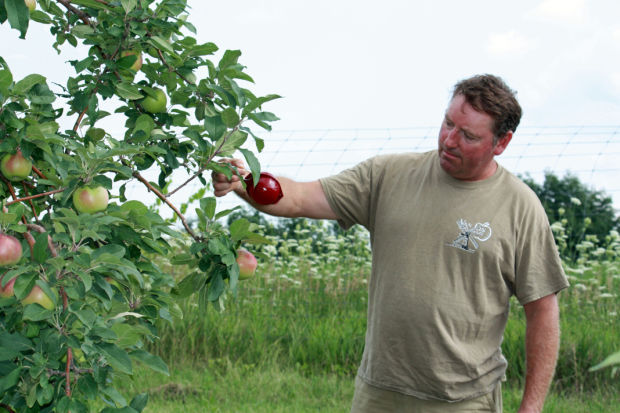 Orchard owners named farm family of the year