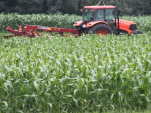 Farmers having good season despite wet conditions