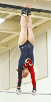 Gymnasts focused on sectionals
