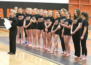 Viroqua cooperative gymnasts head to state