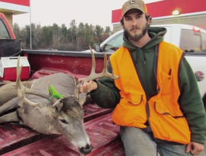 Deer numbers down for gun season
