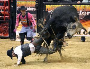 Photos: Bull Riding (11/7/15)