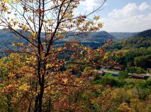 Photos: Regional Fall Color