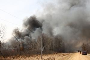 Cutler forest fire costly for person who set it