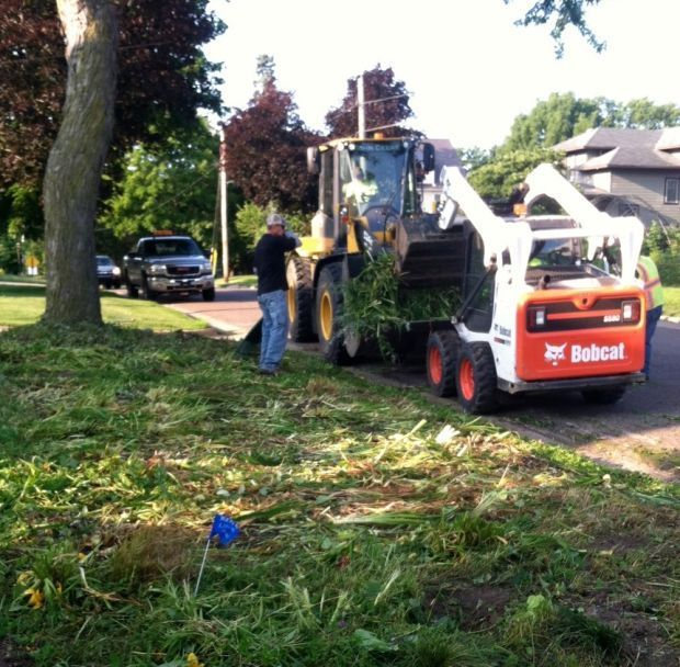 City of Viroqua removes boulevard gardens that fail to meet ordinance