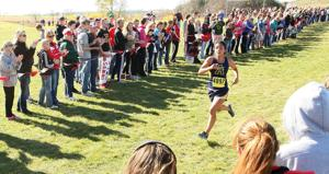 Lichter, Westby girls claim sectional titles