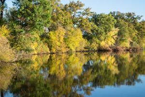 Photos: Regional Fall Color - 2.0