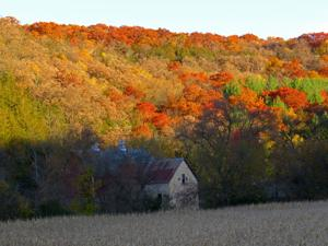 Photos: Regional Fall Color - 3.0
