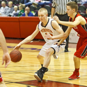 Neillsville outpaces Hawks in playoff game