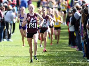 Photos: Drews/Nebauer Cross Country Race (10/18/14)