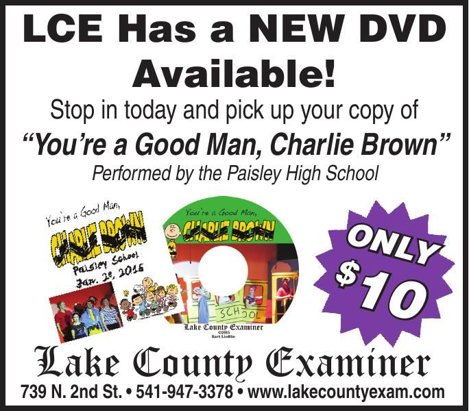 LCE - New DVD