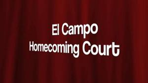 2014 Homecoming Interviews