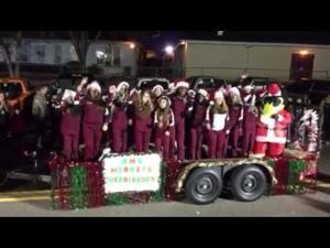 A scene from Albany's Christmas Parade