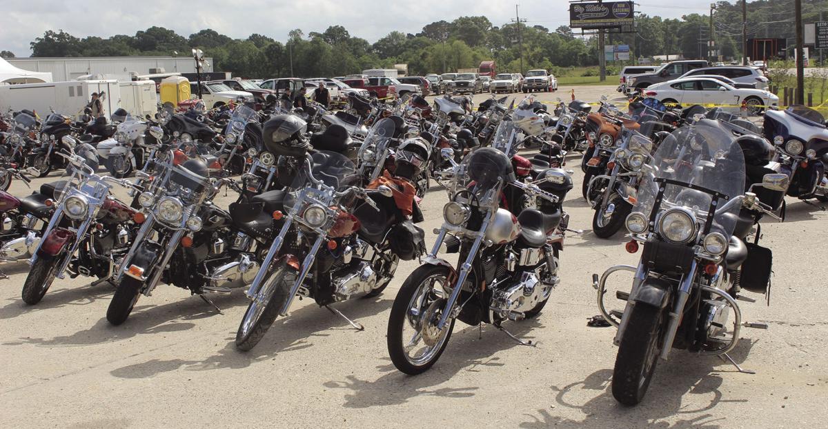 Gathering of bikes