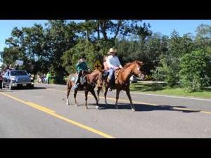 2014 Livingston Parish Fair Parade