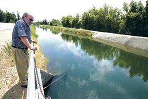 Local public works battle storm drain pollution