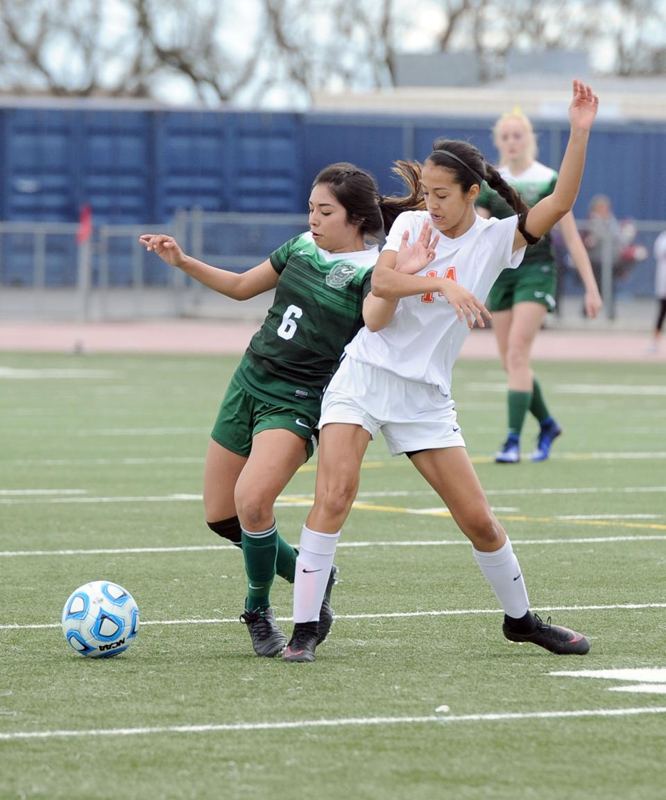 Division IV girls soccer: Hawks fall to two-time champ Woodland