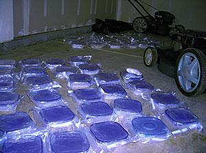 100 lbs. of meth seized