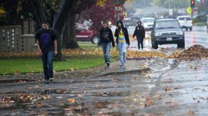 Lodi gets a bit of much-needed rain