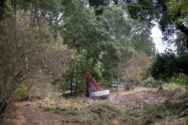 Woodbridge Wilderness Area fire road concerns residents