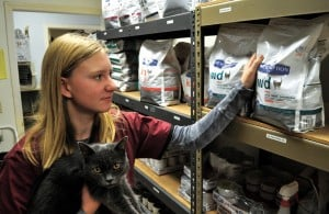 Lodi High School student Lauren Uniack volunteers at veterinary hospital