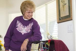 Lodians care for unusual animals