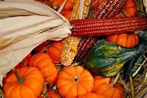 Celebrate the fall season with these five traditional activities