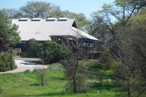 10 ways to celebrate spring at the Cosumnes River Preserve