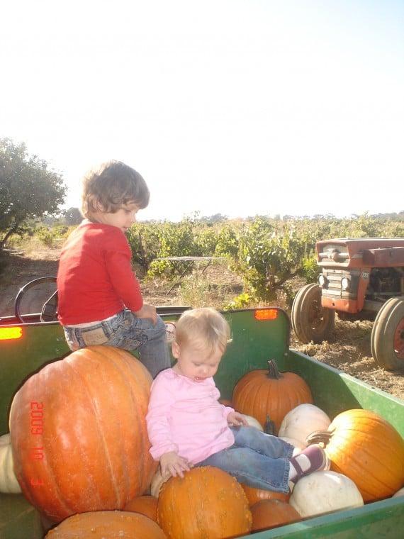 Noah and Lilah Hibdon climbing on the pumpkins
