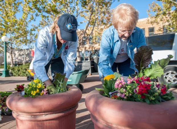 San Joaquin County Master Gardeners get Downtown Lodi ready for winter