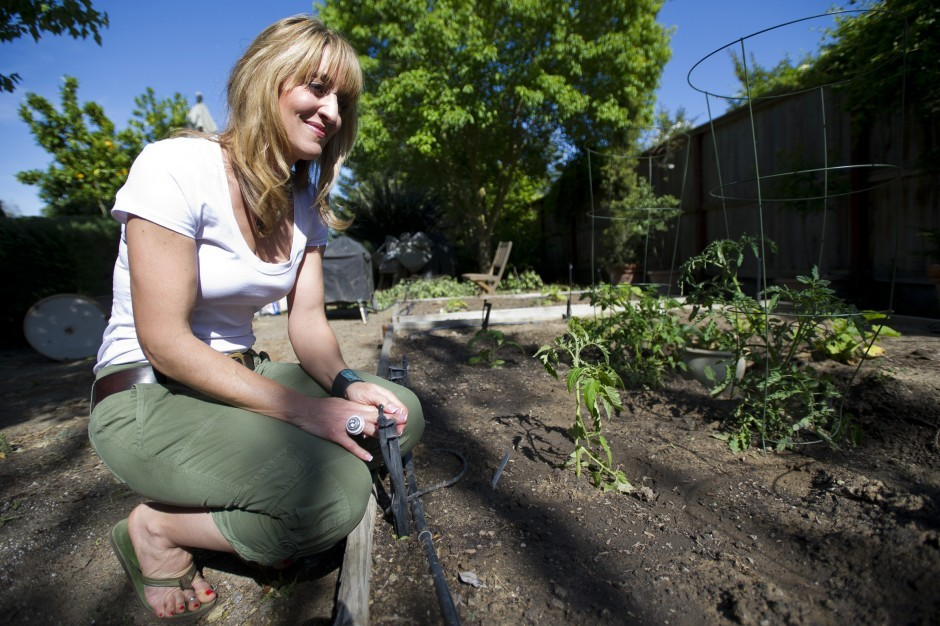 From field to the table, Laura McIntosh follows the food