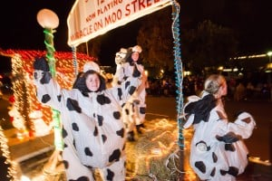 Parade Lights Up Lodi: Cows dance on the Kaehler Family Dairy float during the 17th annual Parade of Lights in Downtown Lodi on Thursday, Dec. 6, 2012.  - Dan Evans/News-Sentinel