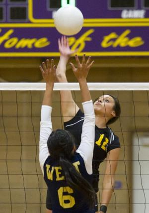 Tokay Tigers shine in volleyball on Senior Night