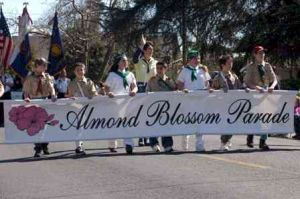 Salute agriculture and visit the 52th annual Almond Blossom Festival