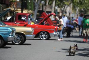 Shining muscle cars show off at the Stuck in Lodi car show