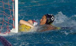 Water polo: Tigers run into roadblock