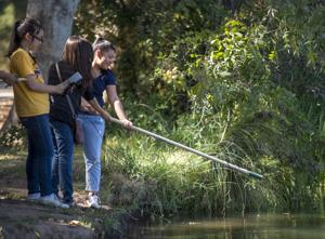 Storm Drain Detectives test Lodi Lake, Mokelumne water