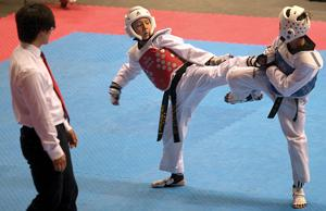 Local martial artists bring home taekwondo state championships