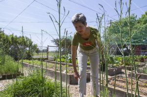 Galt grower Charity Kenyon wants to keep food passion growing