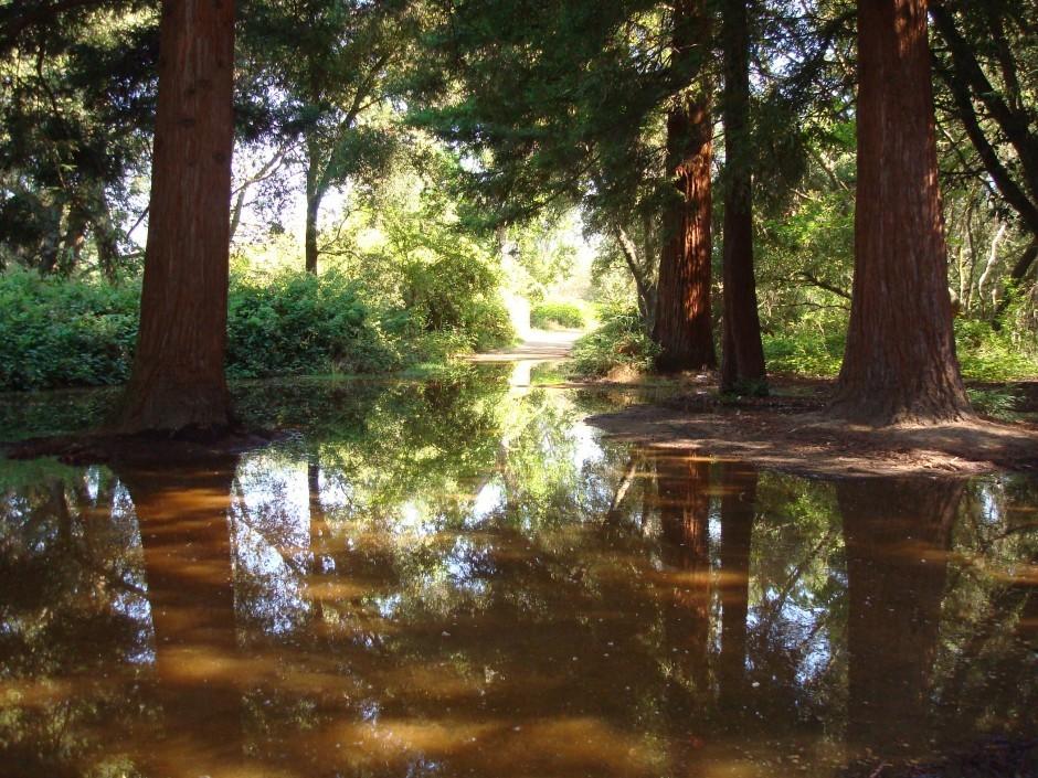 Lodi Lake Nature Area closed from flooding