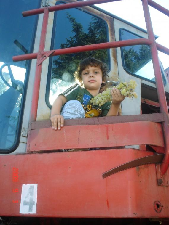 Noah on HIS harvester